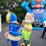 女子サッカーノジマステラ神奈川相模原の集客の参考になりました 町田ゼルビアvsジェフ千葉に行ってきました