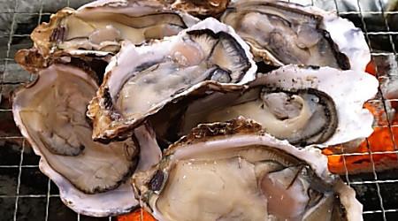 同じ牡蠣を食べて妻はあたるのにボクは大丈夫 2つの理由