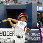 女子プロ野球リーグの歩みと錯覚資産