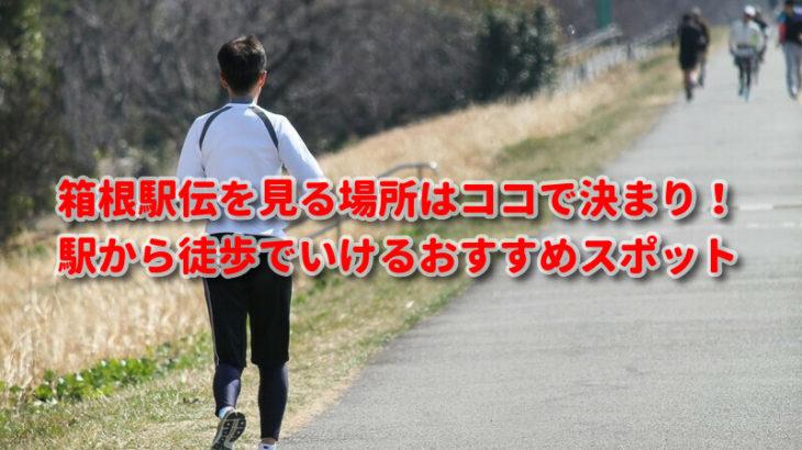 箱根駅伝を見る場所はココで決まり!駅から徒歩でいけるおすすめスポット