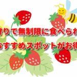 いちご狩りで無制限に食べられる茨城のおすすめスポットがお得な理由