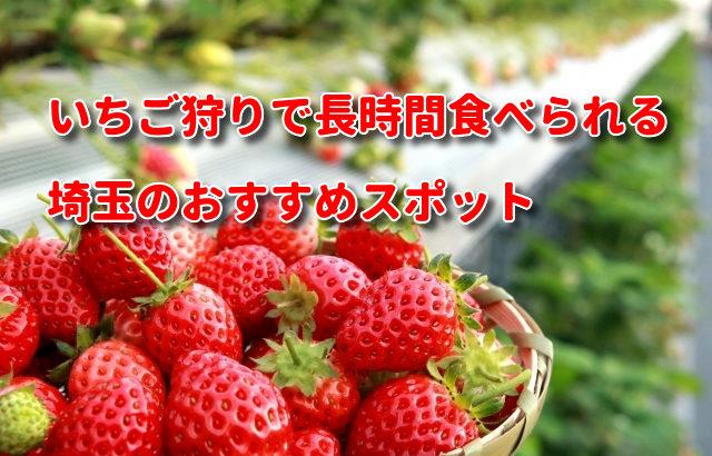 いちご狩りで長時間食べられる埼玉のおすすめスポットがお得な理由